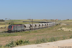 BB36001 near Sidi Hajjaj.