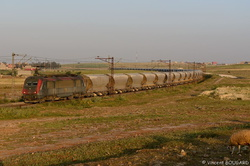 BB36008 near Sidi Hajjaj.