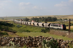 BB36004 near Sidi Hajjaj.